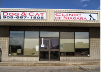 Dog and Cat Clinic OF Niagara