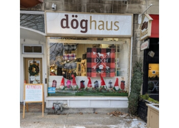 Montreal pet grooming Doghaus
