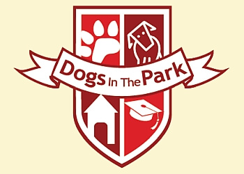 Guelph dog trainer Dogs In The Park