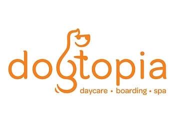 Coquitlam pet grooming Dogtopia
