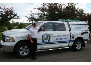 Caledon pest control Domtech Pest Control