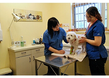 Richmond Hill veterinary clinic Don Head Village Animal Clinic