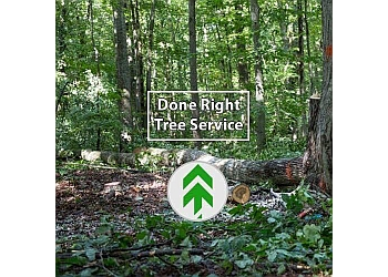 Done Right Tree Service, LLC