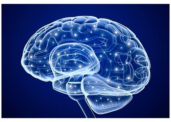 Edmonton neurologist Dr. Elout Starreveld, MD