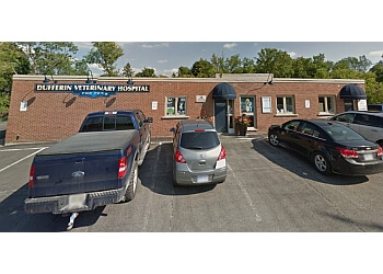 Orangeville veterinary clinic Dufferin Veterinary Hospital