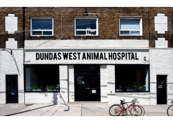 Toronto veterinary clinic Dundas West Animal Hospital