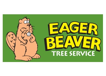 Victoria tree service Eager Beaver Tree Service