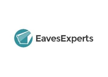 Ottawa gutter cleaner Eaves Experts