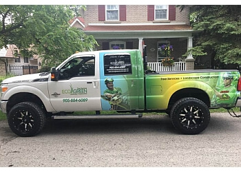 Richmond Hill tree service Ecogreen