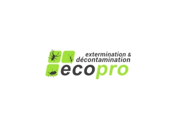 Montreal animal removal Ecopro Gestion Parasitaire