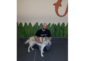 Gatineau dog trainer Educateur Animal