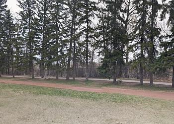 Calgary public park Edworthy Park