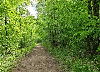 Stouffville hiking trail Eldred King Woodlands