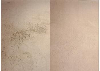 3 Best Carpet Cleaning In Brantford On Expert