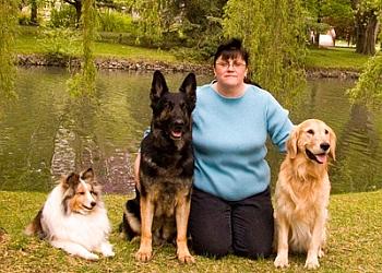 Kitchener dog trainer  Elite Dog Training