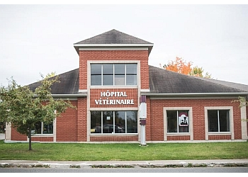 Sherbrooke veterinary clinic Estrie Veterinary Hospital