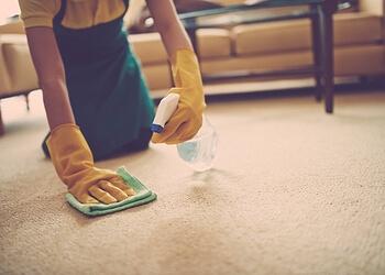 Eveready Carpet Care Sherwood Park Carpet Cleaning