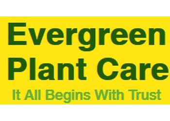 Stouffville lawn care service Evergreen Plant Care