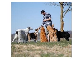 Ottawa dog trainer Ferghus & Company