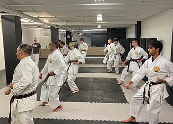 Guelph martial art Ferraro Karate and Martial Arts