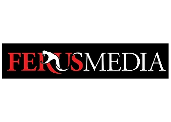 Kingston web designer FerusMedia