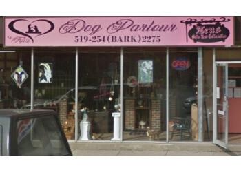 Windsor pet grooming Fifi's Dog Parlour