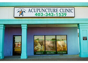 Red Deer acupuncture FlyingTurtleAcupuncture
