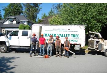 Langley tree service Fraser Valley Tree Service