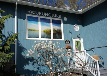Fredericton acupuncture Fredericton Wellness Clinic
