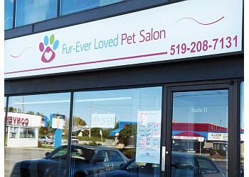 Kitchener pet grooming Fur-Ever Loved Pet Salon