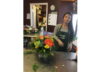 Regina florist GROWER DIRECT FRESH CUT FLOWERS