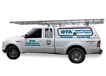Richmond Hill pest control GTA Wildlife Removal & Pest Control Ltd.
