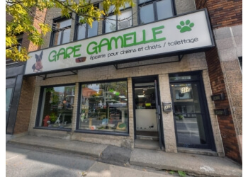 Montreal pet grooming Gare Gamelle