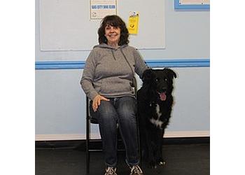 Medicine Hat dog trainer Gas City Dog Club