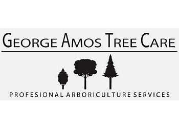 North Vancouver tree service George Amos Tree Care