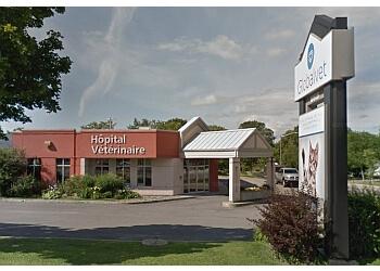 Quebec veterinary clinic Globalvet - Veterinary Clinic Loretteville