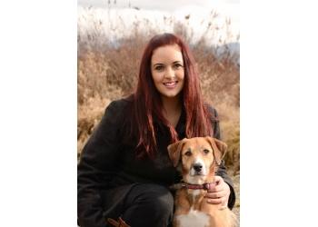 Port Coquitlam dog trainer Good Dog Training Studio