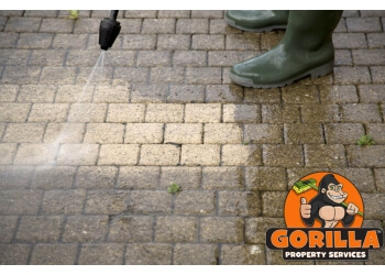 Winnipeg gutter cleaner Gorilla Property Services