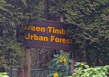 Surrey hiking trail Green Timbers Urban Forest