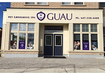 Markham pet grooming Guau Pet Spa