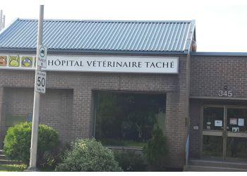 Gatineau veterinary clinic 'Hôpital Vétérinaire Taché