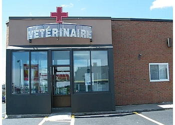 Trois Rivieres veterinary clinic Hôpital Vétérinaire of Trois-Rivières Ouest