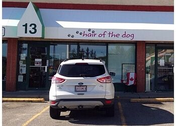Calgary pet grooming HAIR OF THE DOG GROOMING SALON INC.