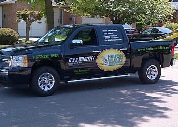Burlington animal removal Halton Wildlife Services