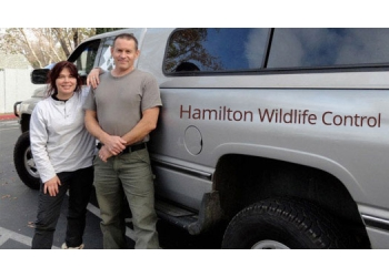 Hamilton animal removal Hamilton Wildlife Control