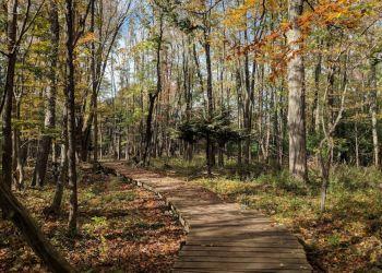 Guelph public park Hanlon Creek Park