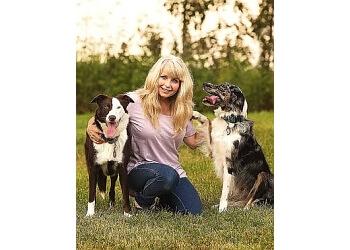 St Albert dog trainer Harvard Paw