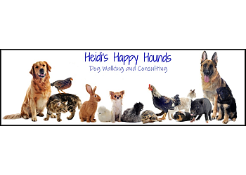 Guelph dog walker Heidi's Happy Hounds