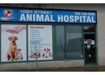 Peterborough veterinary clinic High Street Animal Hospital