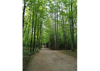 Milton hiking trail Hilton Falls Conservation Area